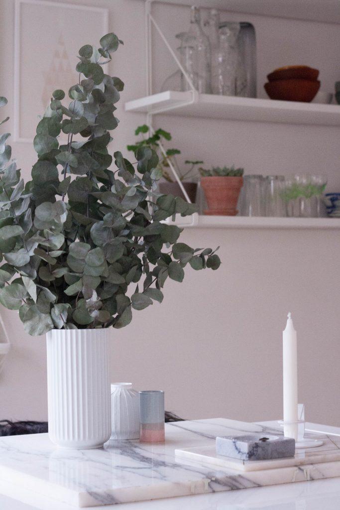 Indretning med planter for dummies // en oversigt