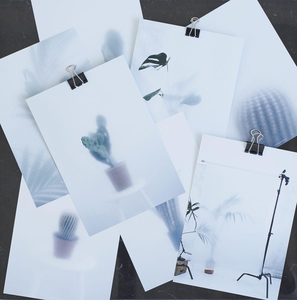 KrisitnaDam_botanic-postcards