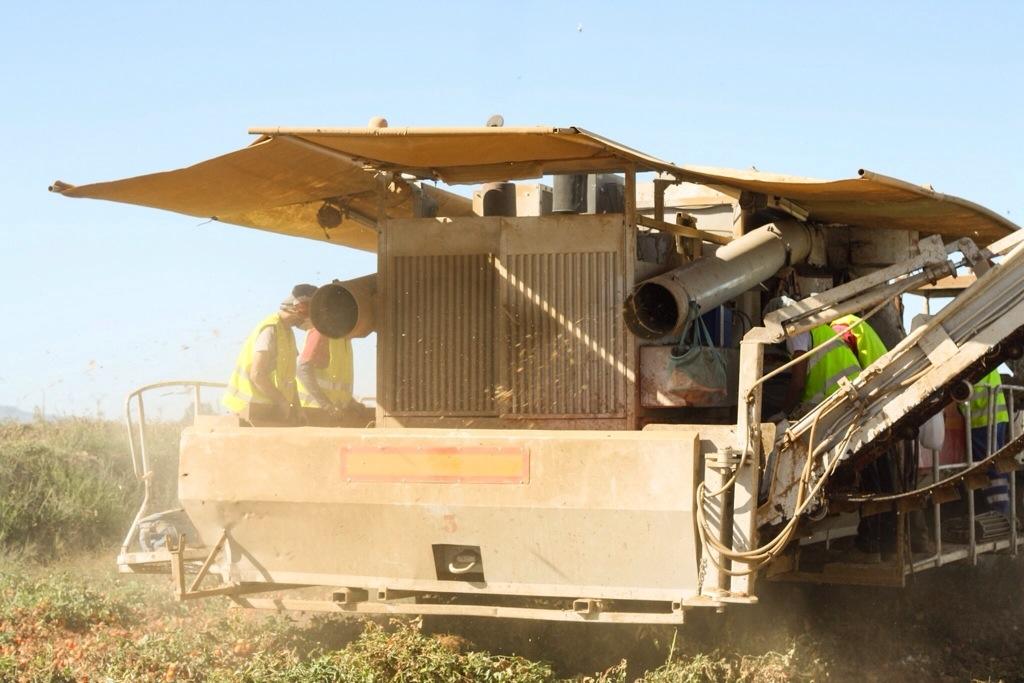 Knorr bæredygtighed Transa