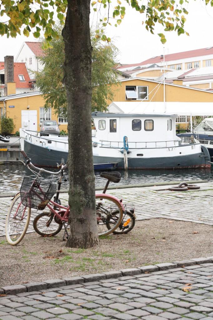 København efterår og jobsøgning