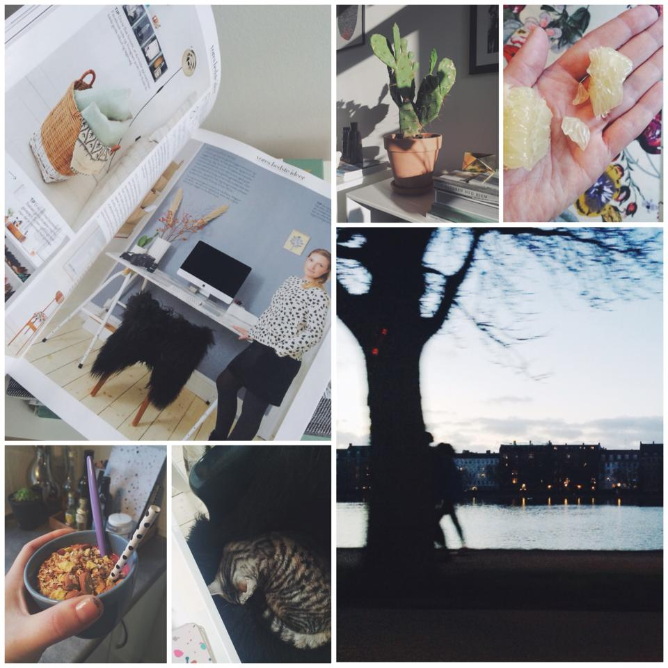 Instag collage