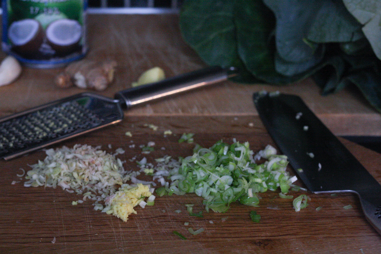Lær At Lave Thaimad Og En Opskrift På Spicydip
