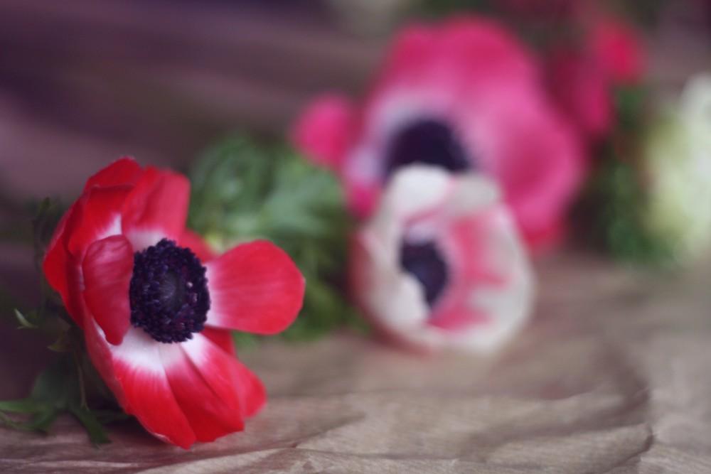 Blomster2
