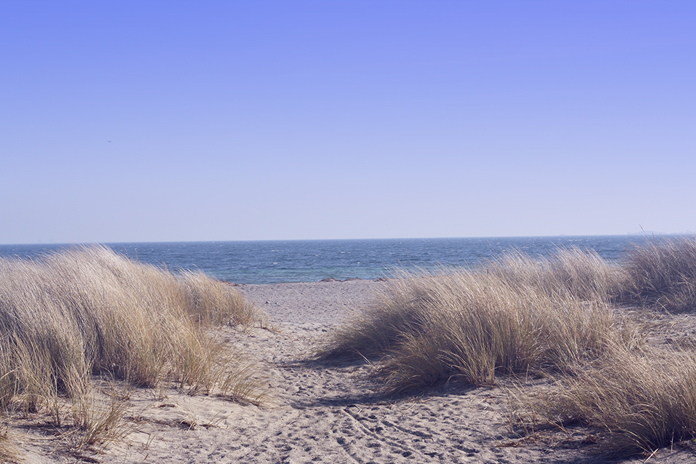 Amager Strand 4