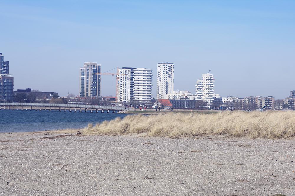 Amager Strand 5