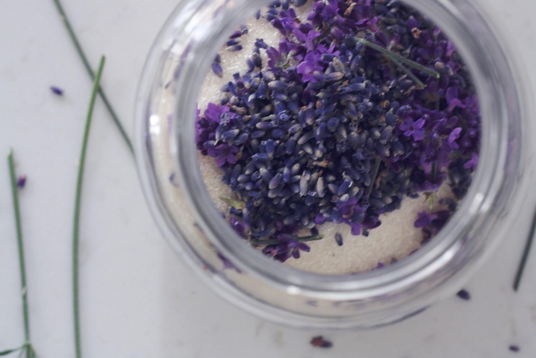 Lavendelsukker opskrift 2