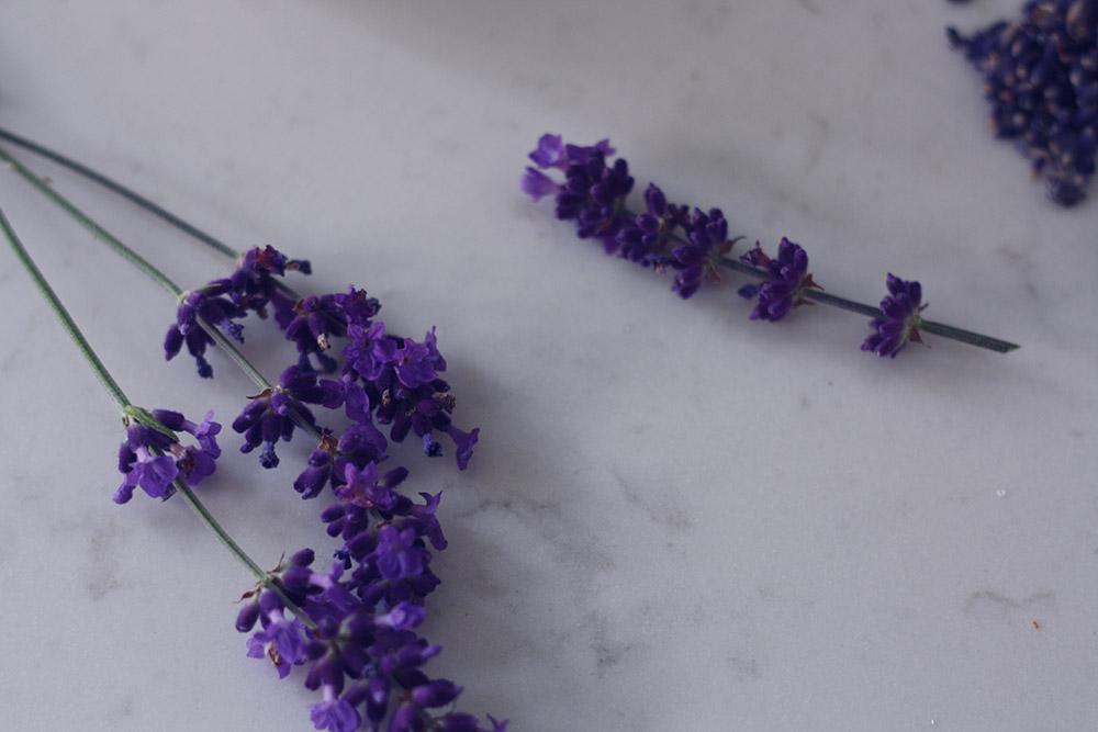 Lavendelsukker opskrift 4