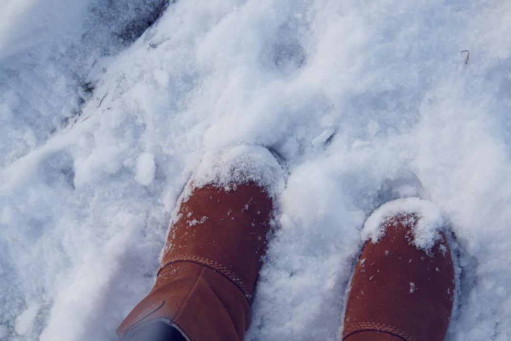 Sne 14