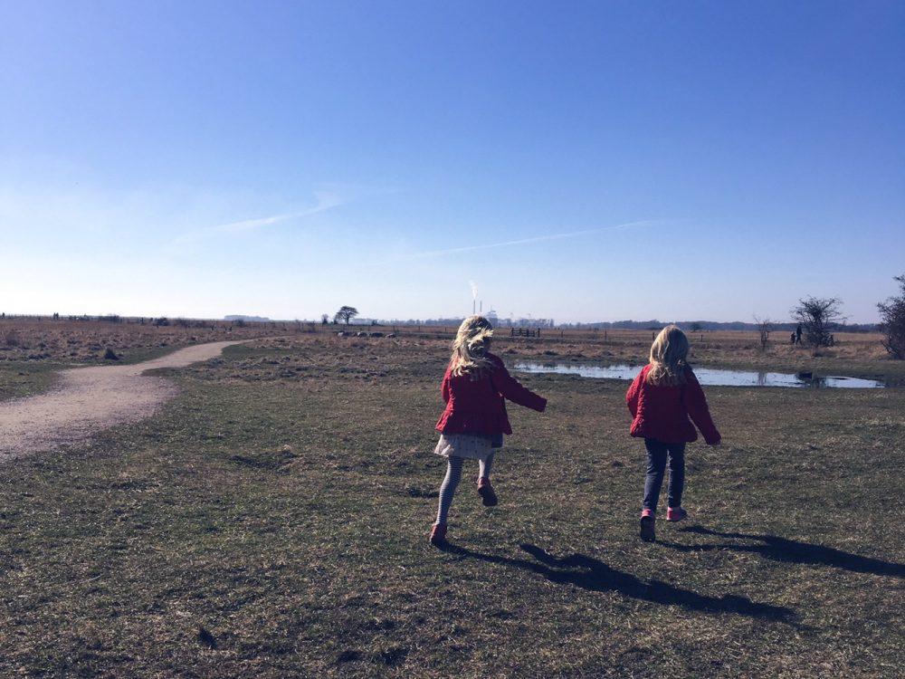 oplevelser amager Naturcenter vestamager kalvebod fælled